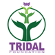 Tridal Foundation